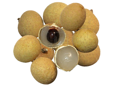 potato is a fruit longan fruit